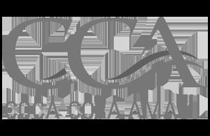 coca-cola-amatil-logo-grey