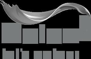 dulux-logo_grey.png